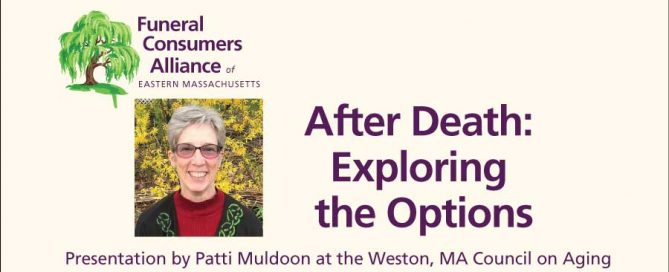 After Death: Exploring the Options