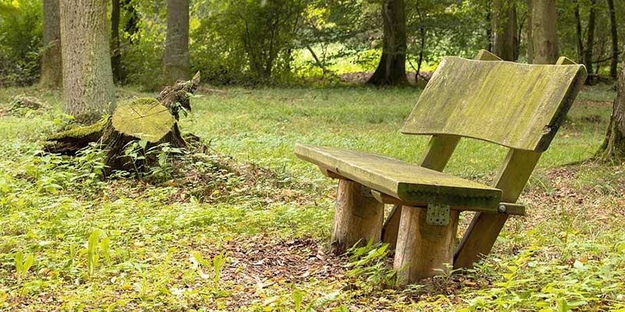 Bench feature